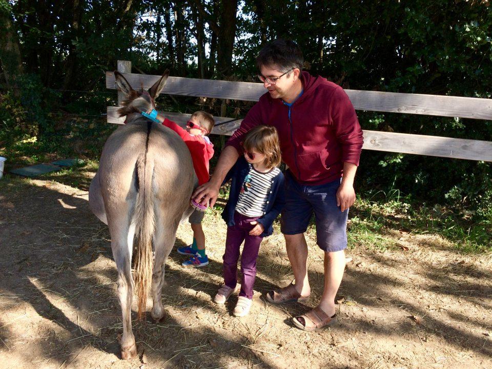 Ateliers parents/enfants Aux ânes etc