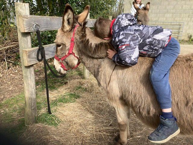 Atelier parents enfants Aux ânes etc